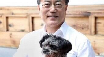Presidente sugere proibir consumo de carne canina na Coreia do Sul
