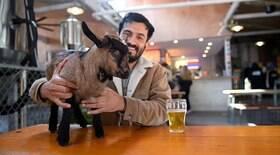 Homem leva filhote de cabra para o bar na Austrália