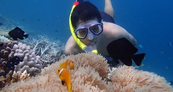 Saiba por que as Maldivas são o paraíso do mergulho