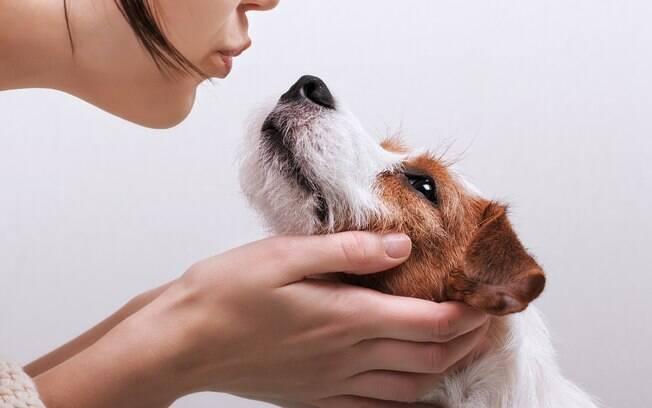 É comum beijarmos na boca do cão sem pensar nas doenças que podemos contrair