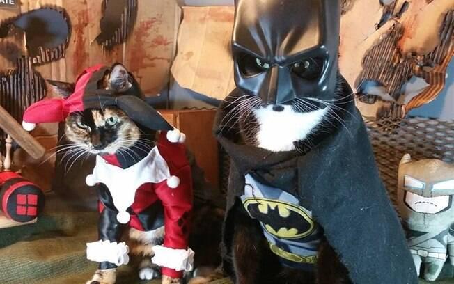 Arlequina e Batman.