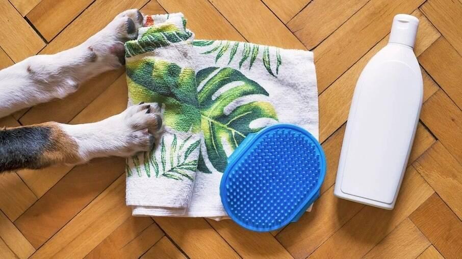 O banho a seco não substitui o banho com água, mas é uma alternativa para os dias frios