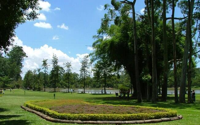 Parque do carmo, na Zona Leste da capital, receberá milhares de novas árvores
