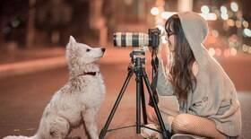 7 dicas para tirar fotos perfeitas do seu bichinho de estimação