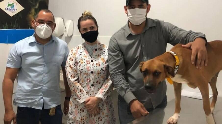 Após 40 dias esperando dono, vítima de covid-19, cadela é adotada