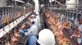 Brasil recorre à OMC contra restrições da Arábia Saudita