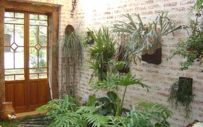 fotos de jardim interno : fotos de jardim interno:de Giuseppe Cafasso, um cantinho da casa se transformou em jardim