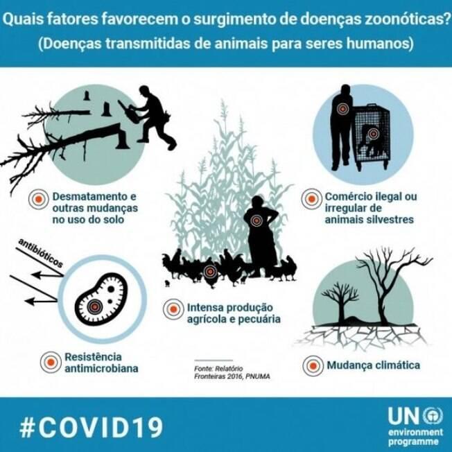 Cartilha do Programa das Nações Unidas para o Meio Ambiente (PNUMA) mostra fatores que favorecem o srugimento de doenças zoonóticas
