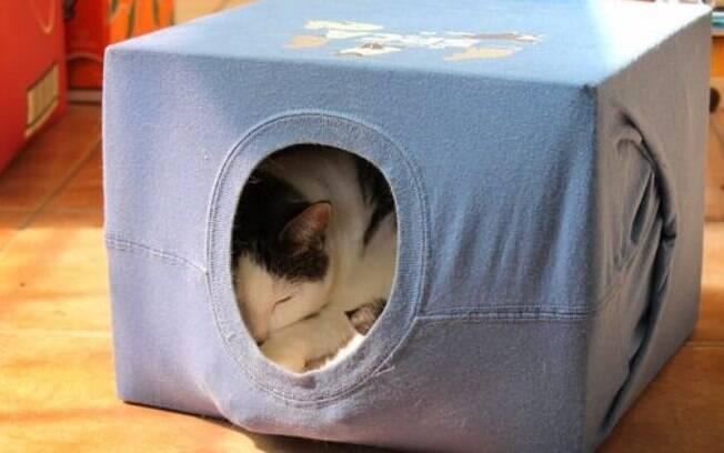 A casinha pode servir tanto como diversão quanto como descanso para o bichano