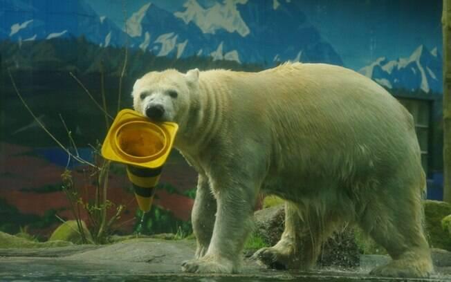 Segundo porta-voz do zoológico, eutanásia será utilizada apenas como