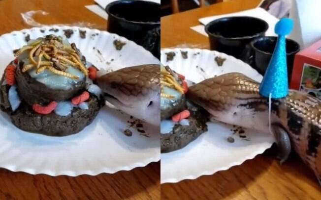 dois frames de animal comendo bolo