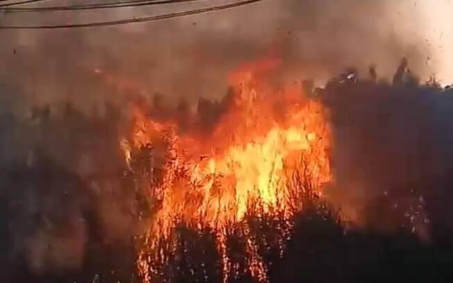 Incêndio atinge área de 30 mil m² no Jardim Chapadão, em Campinas