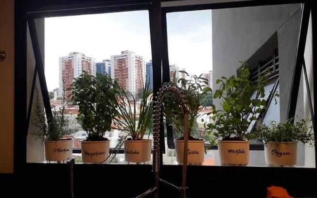 Projeto de mini-horta para apartamentos pequenos, feito pela paisagista Rita Gengo