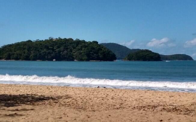 O mar calmo e as árvores são o ponto forte da praia da Mococa
