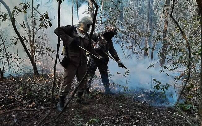Mais de 40 bombeiros da Força Nacional de Segurança Pública já atuam desde o dia 24 de setembro na região pantaneira