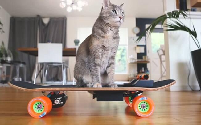 Midi em seu skate elétrico