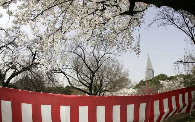 Cerejeiras dão cor e graça aos parques japoneses