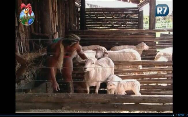 Valesca conta às ovelhas sobre o show de Leonardo