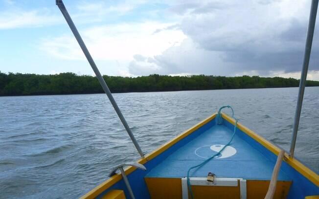Passeio de barco pelo rio Araturá