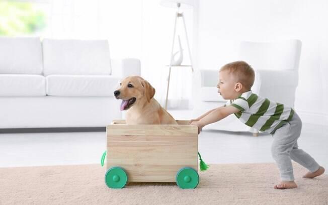 A criança pode brincar com o cachorro, mas é sempre importante respeitar o espaço do animal