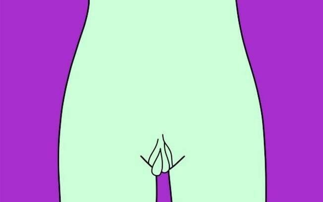Vagina - Srta. Cortinas