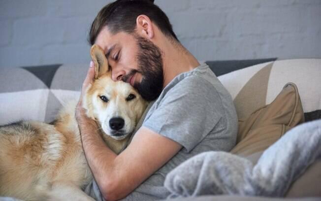 Adote um animal de estimação no Dia do Amigo