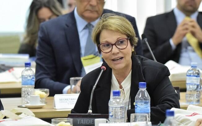 Ministra da Agricultura nega redução em demarcação de terras indígenas agora que atribuição é da sua pasta, não da Funai