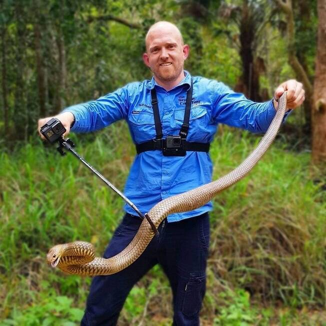 homem capturando cobra marrom
