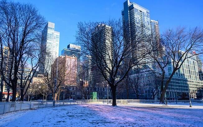 Opte por conhecer Toronto no inverno, assim aproveitando para conhecer os principais pontos turísticos e também as atrações que só existem no inverno