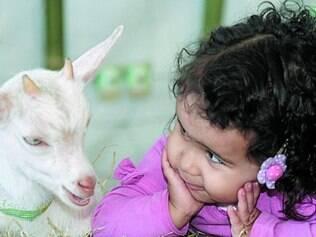 Exposição agropecuária é a maior do Estado,  vai até domingo e tem grandes atrações para a criançada