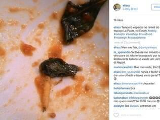 Foto mostra larva em prato do Eataly