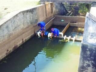 Estratégia. Funcionários do Saae de Viçosa instalam captadores para captar a água que está abaixo do nível do vertedouro
