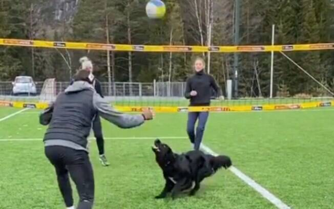 Kiara jogando vôlei com o dono Mathias