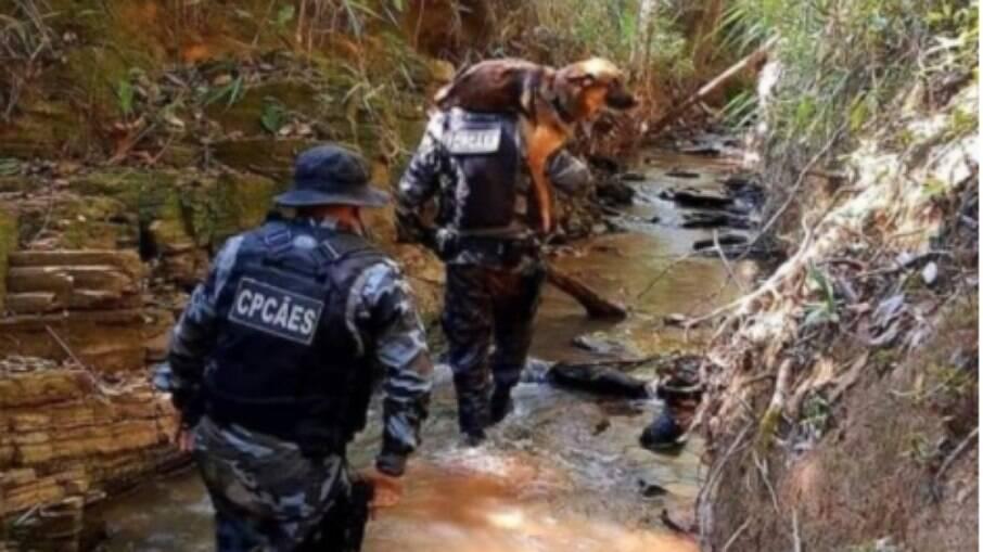 Pastor alemão Sauke é carregado no ombro por PM após se ferir em rio de Cocalzinho de Goiás durante as buscas por Lázaro