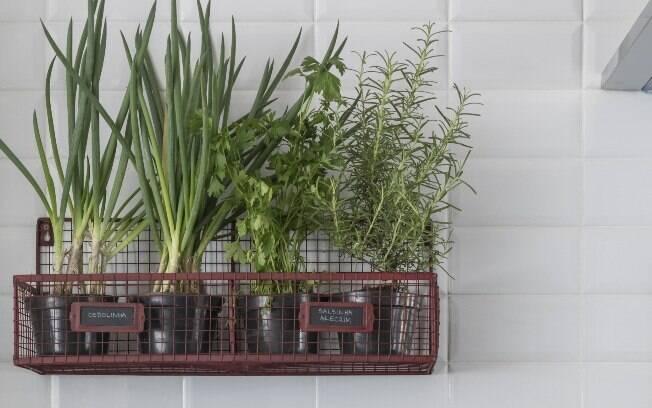 Ter uma cozinha com vasos ajuda a cultivas as ervas e deixar os temperos à mostra para facilitar o preparo das receitas