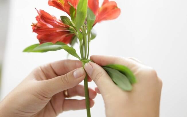 flores jardim guedala: que estiverem próximas às flores. Foto: Bruno Zanardo/Fotoarena