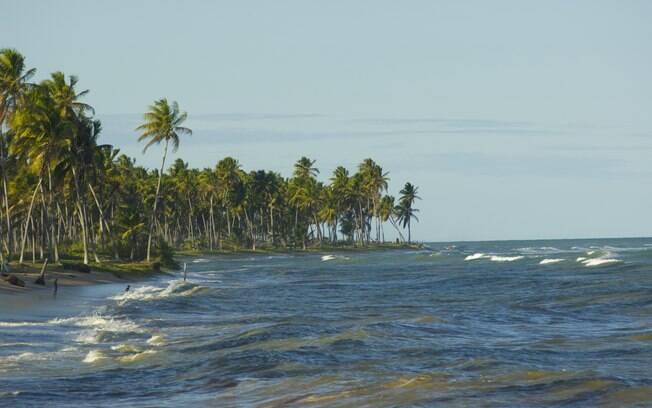 Regalias e belas paisagens na Praia do Forte, na Bahia