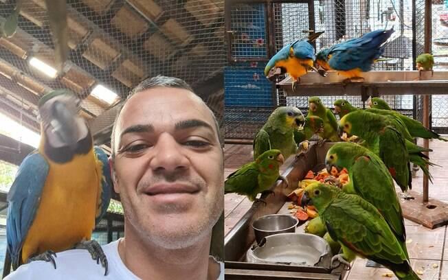 Paulo Roberto Martins decidiu criar uma organização para ajudar animais após resgatar uma arara ferida