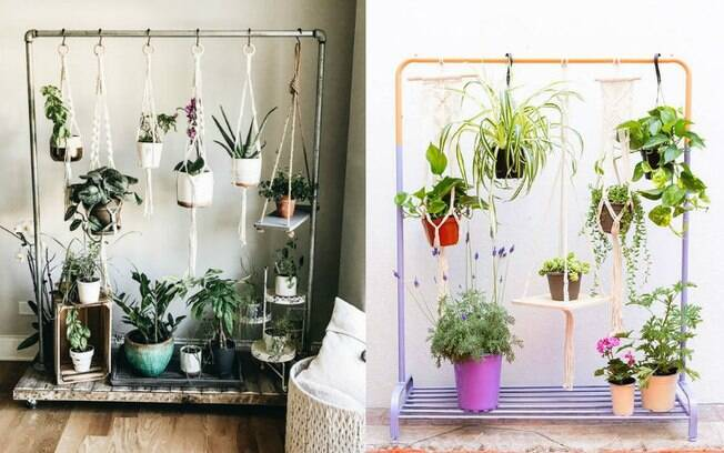 Em mais uma ideia, o modelo de arara também é bem-vindo para ter um jardim vertical . Deixe-as bem presas