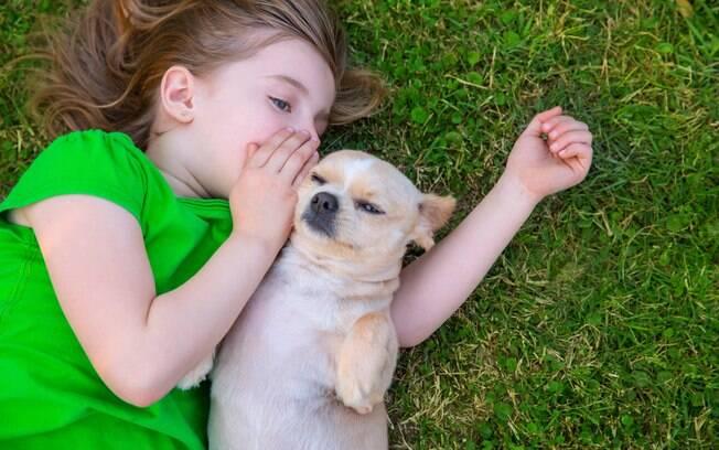 Os cães utilizam gestos para pediram o que querem, como comida, passeio e brincadeiras