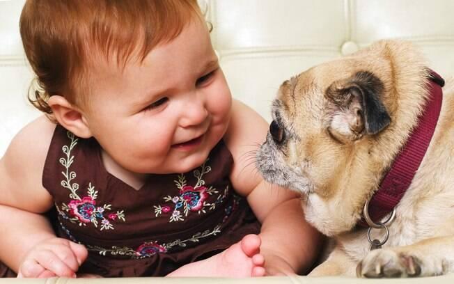 Pesquisa americana aponta que os bebês reconhecem se os cachorros estão bravos ou brincalhões de acordo com o latido dos animais