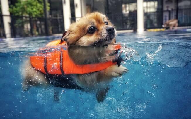 A natação é uma atividade recomendada e extremamente benéfica nesses casos, pois exercita todas as partes do corpo e reduz as dores