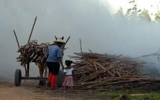 MPT recebe 4,3 mildenúncias de trabalho infantil por ano