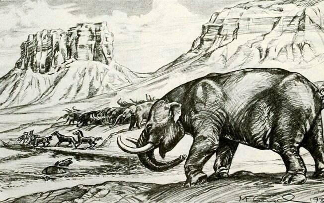 O Stegomastodon conviveu com seres humanos milhões de anos atrás