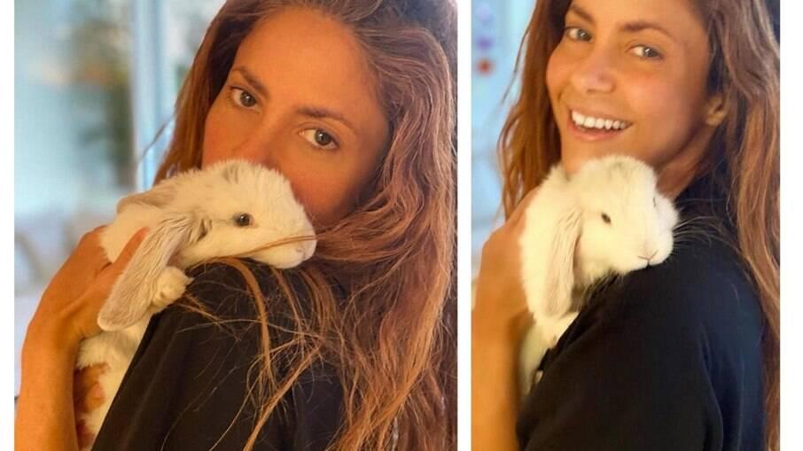 Shakira se despede de coelho de estimação nas redes sociais