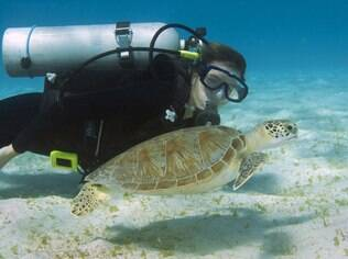 Descanso e beleza garantidos em Curaçao, no Caribe