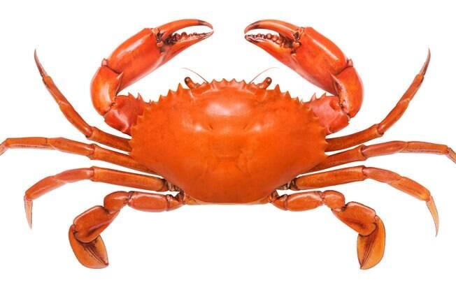 Você já viu um caranguejo desligar o fogão para