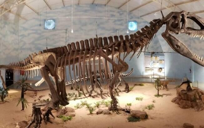 Zooparque de Itatiba inaugura maior Museu de História Natural da América Latina