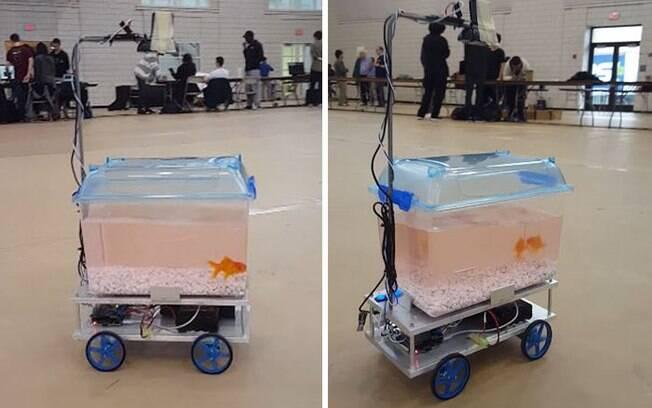 O peixinho dourado e seu aquário móvel