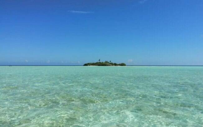 Anúncio promete corais coloridos, filhotes de tubarões e água cristalina